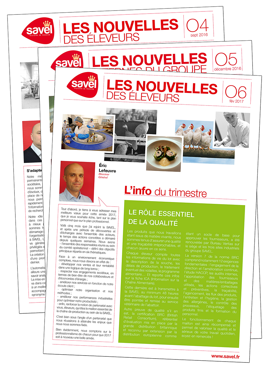 Newsletters SAVEL, à Lannilis